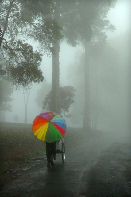 colorful umbrella in the rain by sektorda/patiobeachumbrellas.com