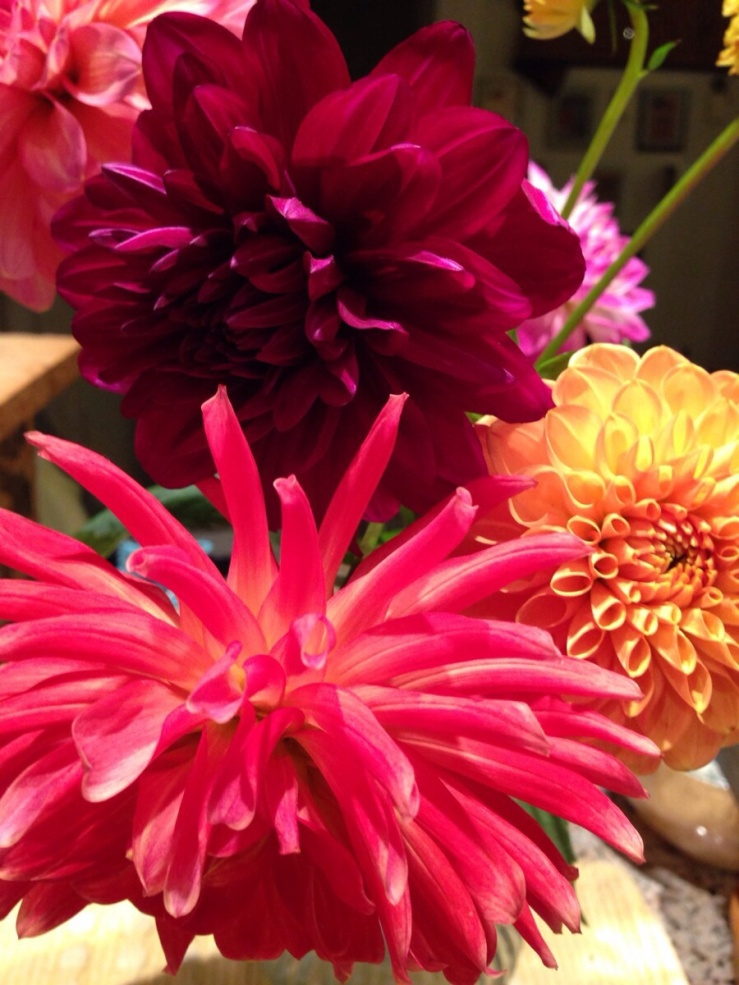 Indira ganesan, Dahlias from the Market, 2013