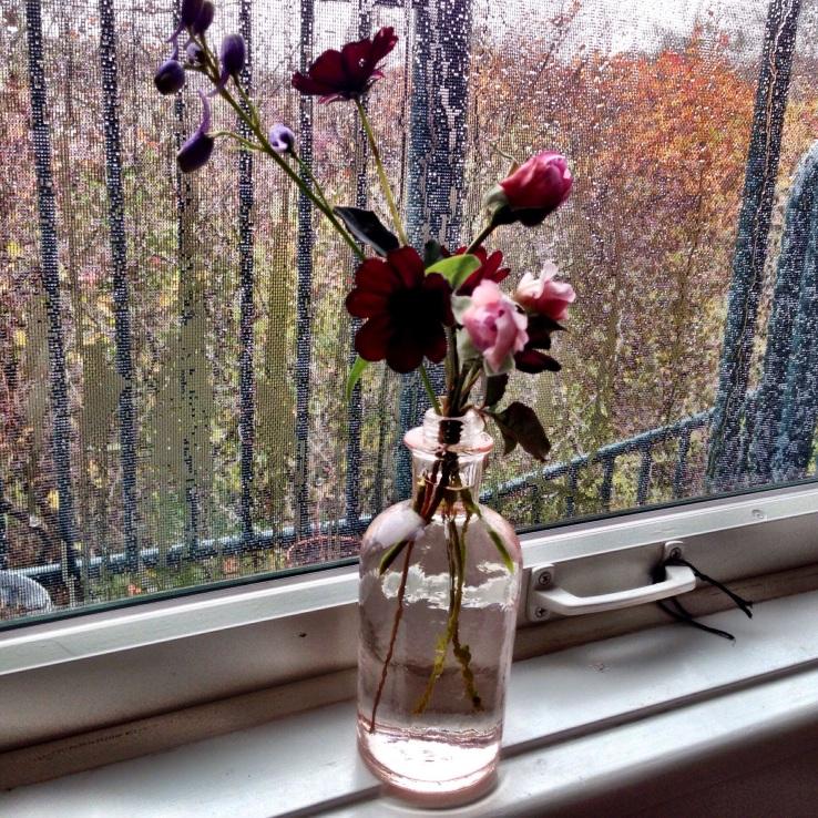 Rosebuds against Rainstorm