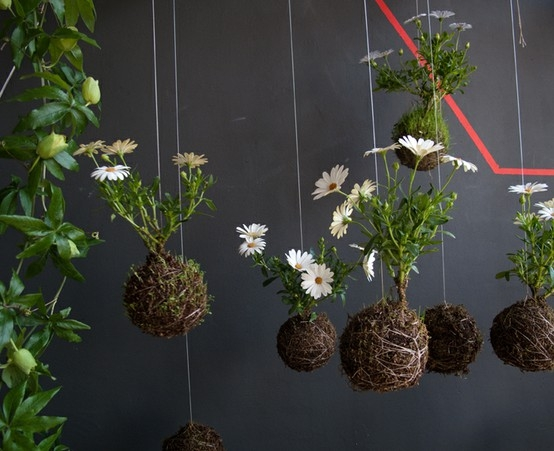 Garden by Fuchs indulgy.com