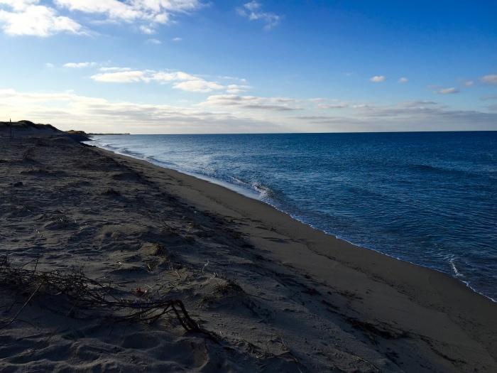The Beach, 2016