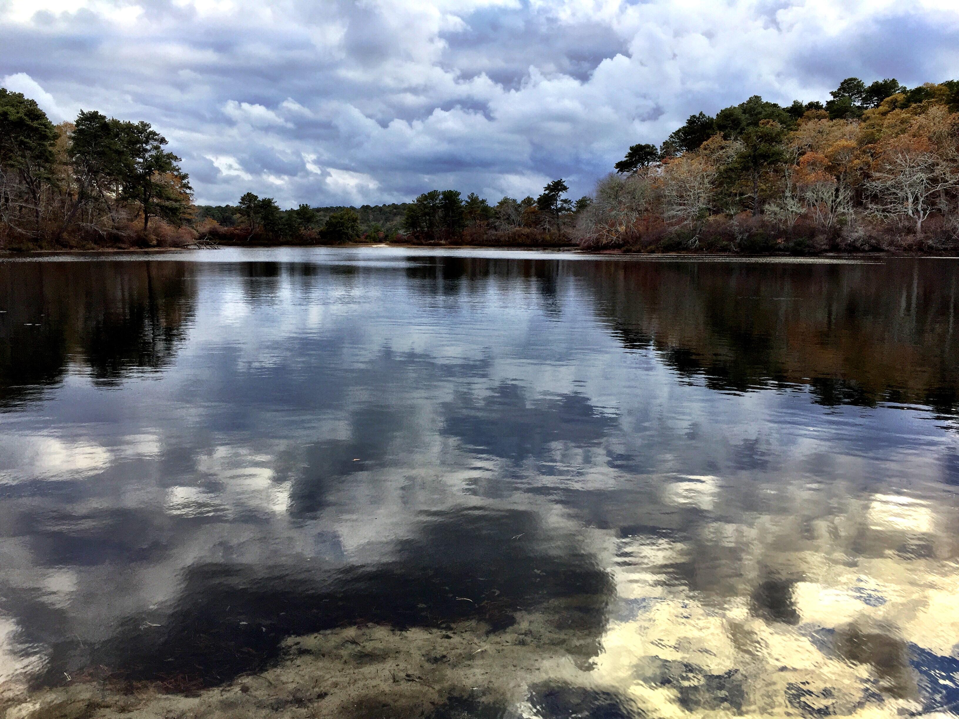 Northeast Pond, Wellfleet, MA