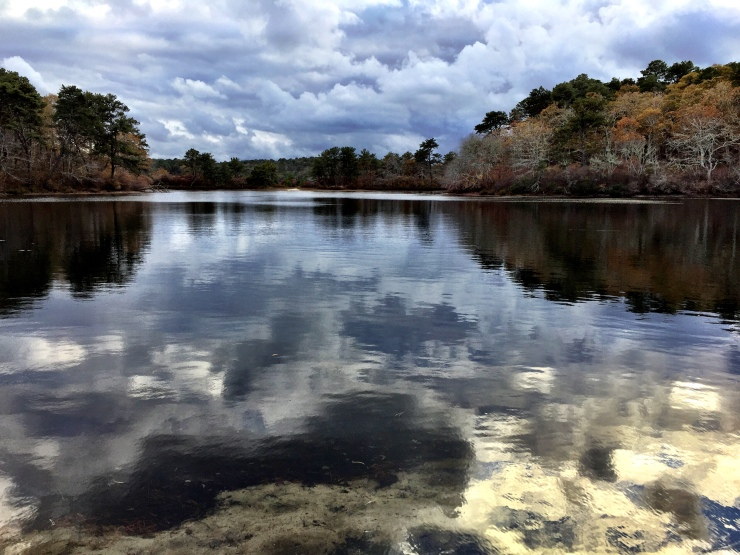 Northeast Pond, Wellfleet, MA